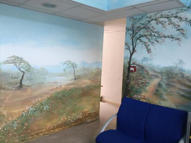 Panoramique - Plafond et murs - Accueil public
